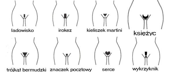 4lomza Forum Ogólne Re Szkoła żak Fryzjer Damski
